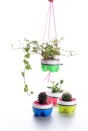 Taz Pollard planter hanging planter group