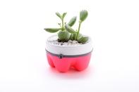 Taz Pollard planter pink